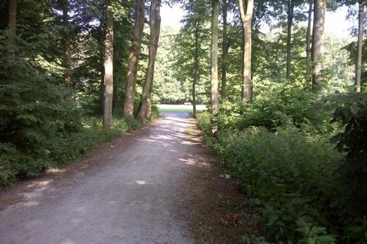Bedrijfsruimte Bezuidenhoutseweg 74, Den Haag