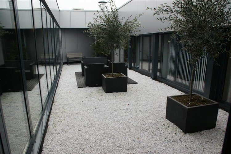 Laagjes 36, Rotterdam