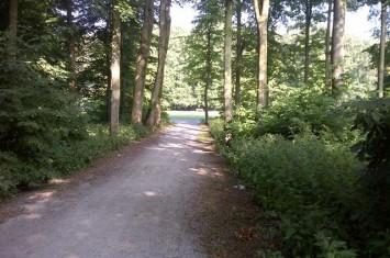 Bezuidenhoutseweg 74, Den Haag